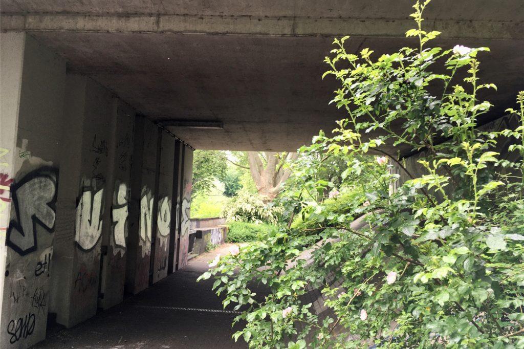 Auch an der Unterführung unter der Straße Seekante wuchert das Gebüsch.