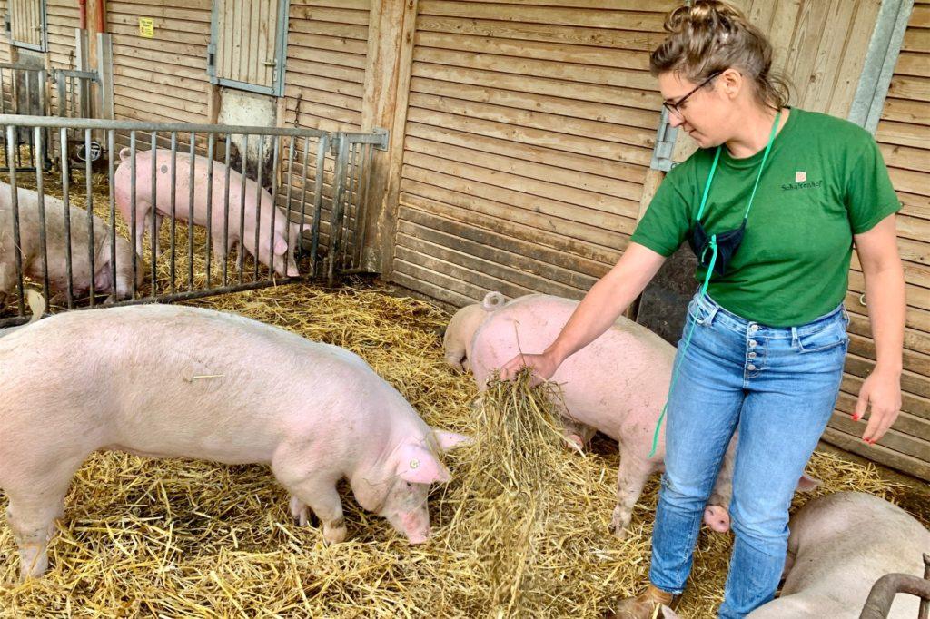 Schultenhof-Landwirtin Anne Hülsen kümmert sich um die Schweine.