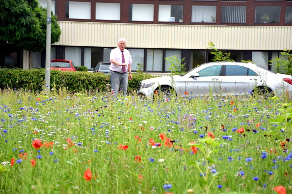 Heinz-Dieter Bauer an der Wildblumenwiese, die er an der Eichendorffstraße angelegt hat. Die Planungen für das Projekt im Rathaus dauerten ihm zu lange, da griff er selbst zum samen.