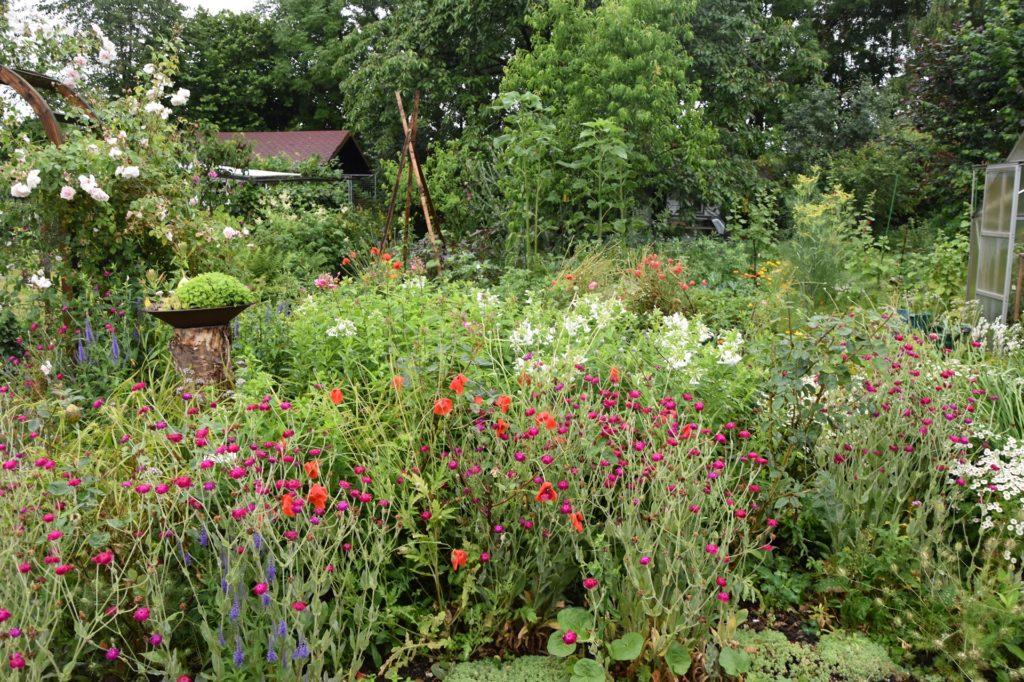 Auch Blumen haben in dem 1200 Quadratmeter großen Garten ihren Platz.