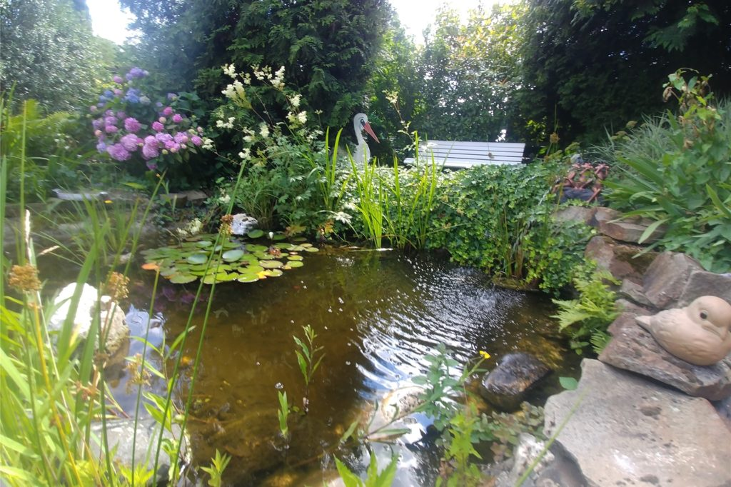 Frösche und Fische sind willkommen. Fährt das Ehepaar in den Urlaub, muss der Teich jedoch abgedeckt werden – sonst kommt der Fischreiher.