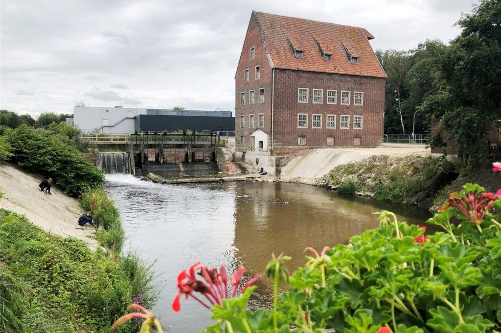 Vor der Mühle wurde der Baugrund für den stählernen Treppenturm vorbereitet. Im Bereich des Uferwegs (links) wird 2021 eine Berkelumleitung gebaggert, damit das Wehr und die Uferbereiche erneuert werden können. Die Umleitung wird später zur Fischaufstiegsanlage ausgebaut.
