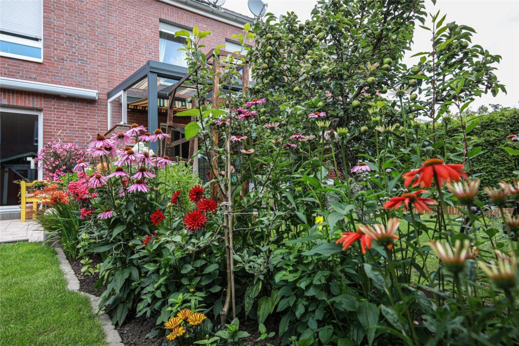 Unterschiedliche Blumen finden sich im Garten.