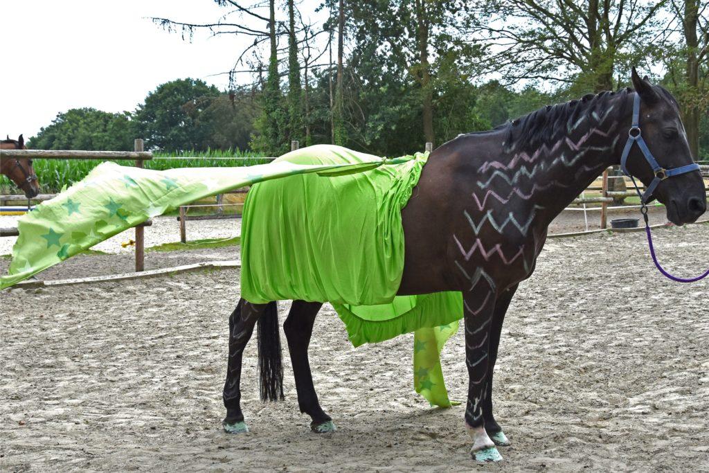 Drachenpferd beim Ferienspaß des ZRFV Kirchhellen.