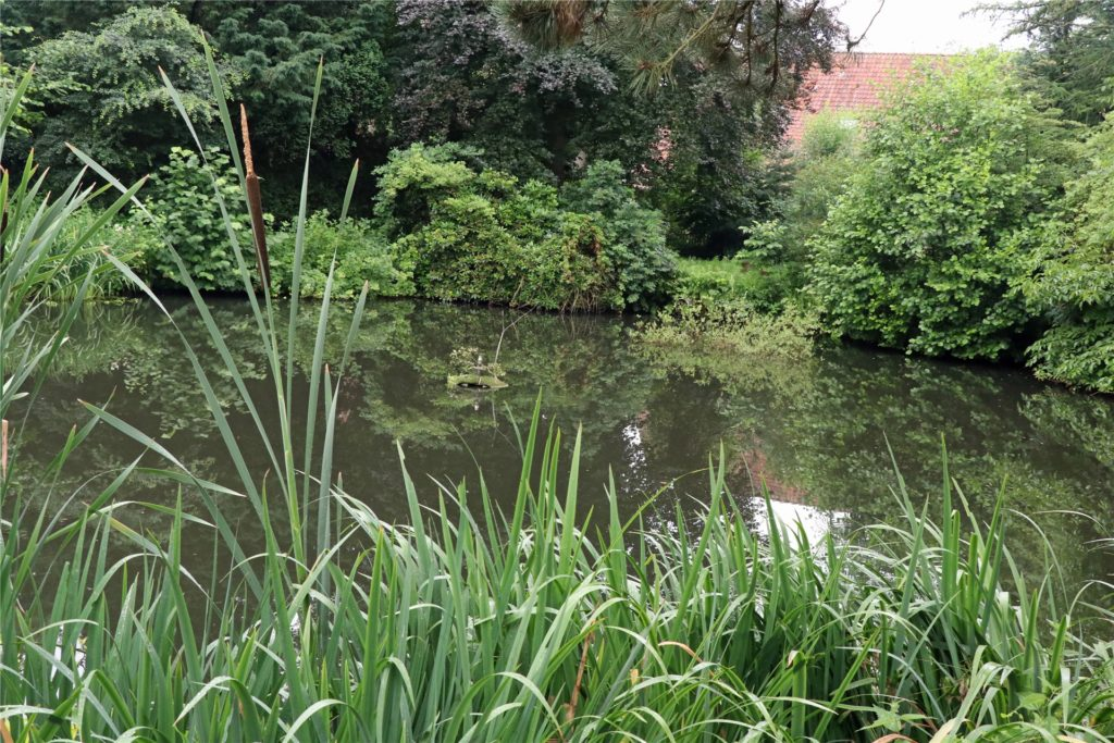 Ein Teich ist auf dem Grundstück angelegt worden.