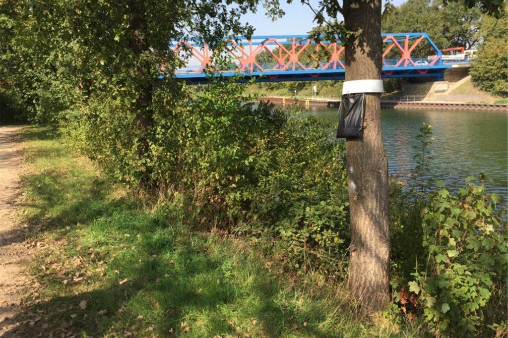 Hier im Gebüsch lag ein blauer Müllsack mit Munition.