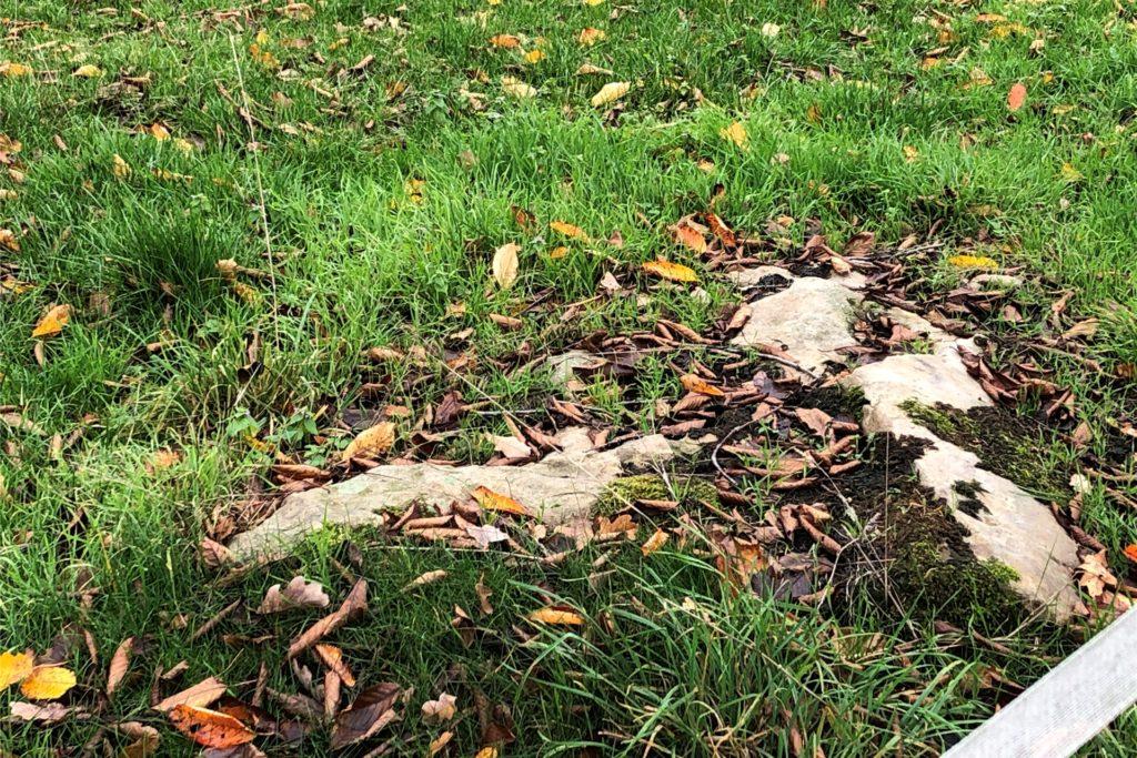 Die Sandsteine gehören zur Landschaft.