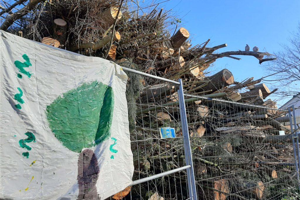 Auf dem Gelände stapeln sich noch die Baumstämme.