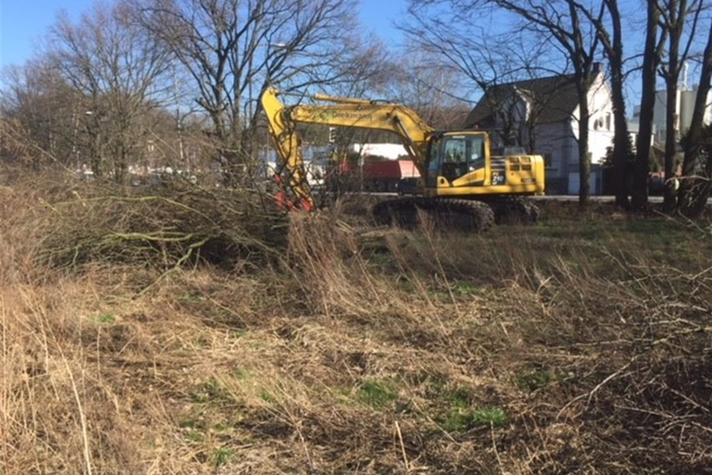 Die Ausnahmegenehmigung für die Arbeiten gilt laut Straßen.nrw bis zum 6. März. Aber auch ohne die dürften die Bäume gefällt werden, wie der Kreis Unna bestätigt.