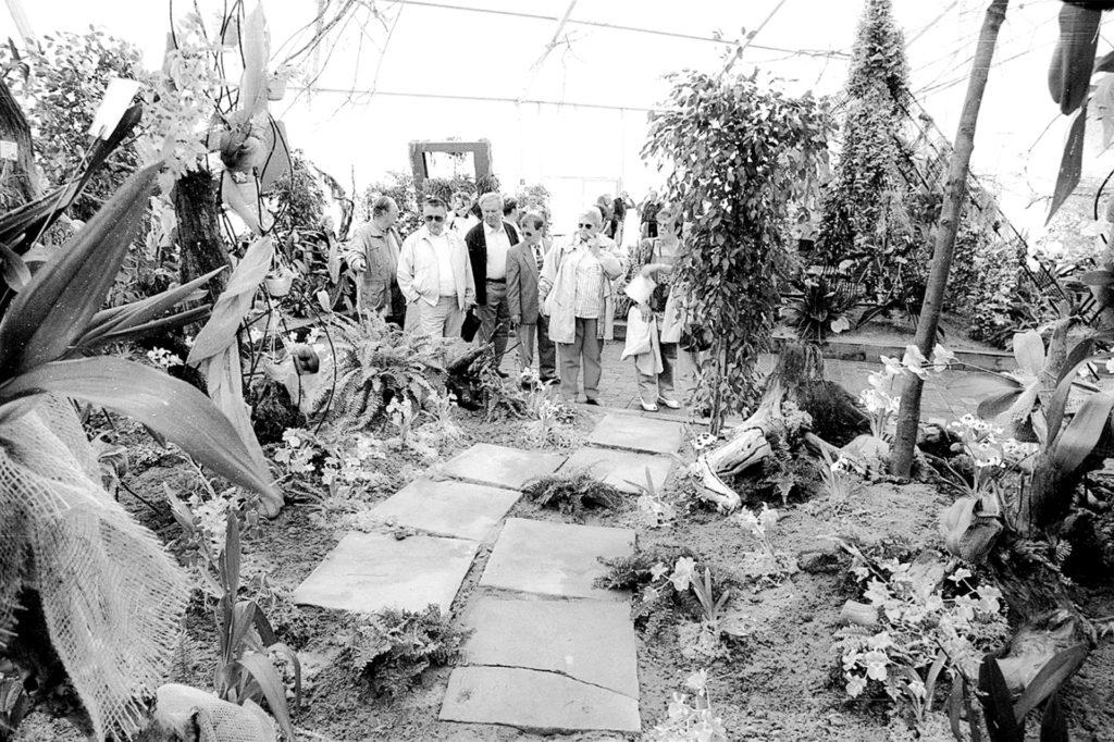 In den Ausstellungshallen der Landesgartenschau staunten die Besucher über zahlreiche verschiedene Präsentationen von Blumen und Pflanzen und bekamen auch Anregungen für den eigenen Garten oder Balkon.