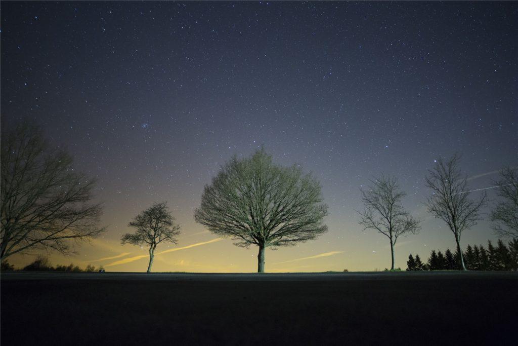 Der Nationalpark Eifel hat sich dem nachhaltigen Sternentourismus verschrieben. So können Touristen einen möglichst ungetrübten Blick in den nächtlichen Himmel werfen und gleichzeitig nachtaktive Tiere erleben.