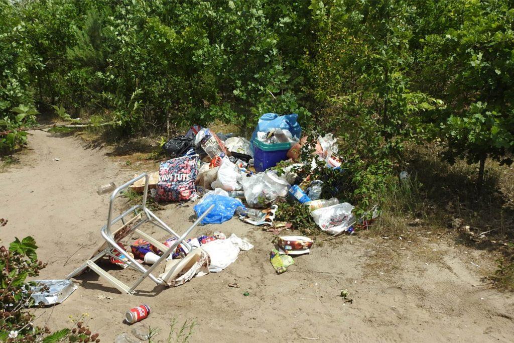 Die unschöne Seite der Silbersee-Besucher: Müll mitten im Naturschutzgebiet.