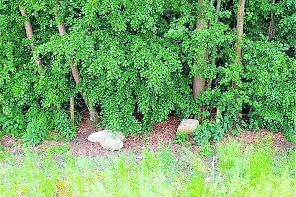 Weitwurf mit Natursteinen: Uwe Wallrabe hofft, dass man die Übeltäter findet.