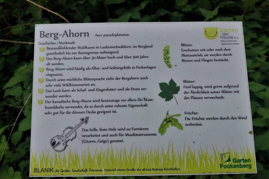 Kleine Hinweisschilder geben großen und kleinen Besuchern Infos zu Bäumen und Sträuchern.