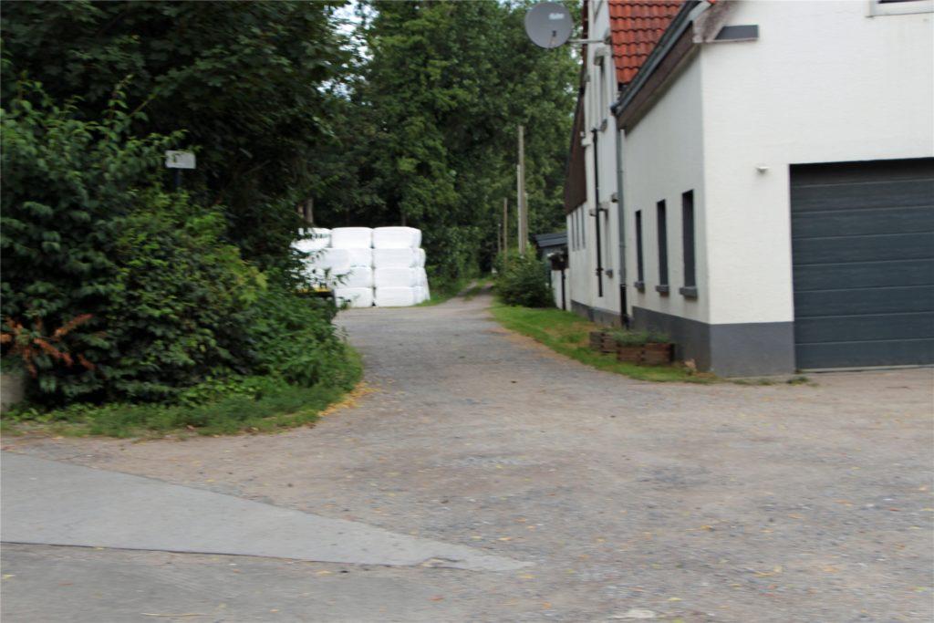 Die Tierschutzorganisation Soko Tierschutz aus München erhebt schwere Vorwürfe gegen eine Viehsammelstelle an der Lünener Straße in Werne.