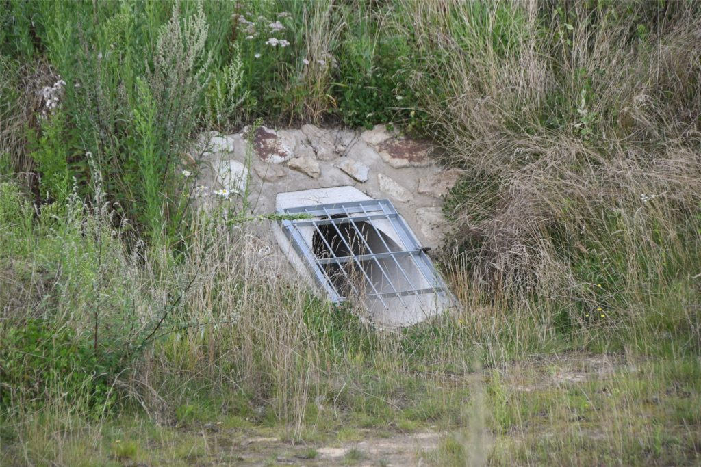 Das Konzept der Regenrückhalte- und überlaufbecken im Auenpark dient dem Hochwasserschutz.